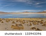 lake edionda in altiplano ... | Shutterstock . vector #133943396