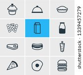illustration of 12 meal icons... | Shutterstock . vector #1339457279
