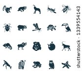 fauna icons set with whale  owl ... | Shutterstock .eps vector #1339554143