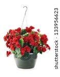 Hanging Basket With Begonias...