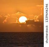 Florida Beach Sunsets Sunrises Flowers - Fine Art prints