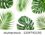 pattern of tropical green... | Shutterstock . vector #1339742150