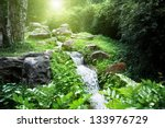 River In Jungle