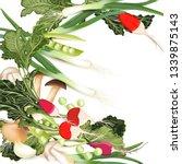 vegan organic vector... | Shutterstock .eps vector #1339875143