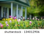 beautiful colorful tulips in... | Shutterstock . vector #134012906