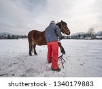 Farrier Assistant Keep Horse...