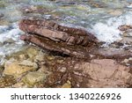 brown stone in close up ... | Shutterstock . vector #1340226926