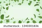 flying peppermint leaves on... | Shutterstock . vector #1340301836