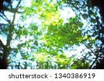 blurred out of focus swirly... | Shutterstock . vector #1340386919