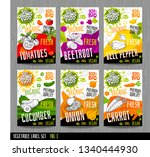 food label set stickers... | Shutterstock .eps vector #1340444930