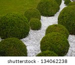 garden detail with box trees... | Shutterstock . vector #134062238