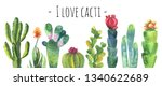 Cacti Watercolor Collection Set....