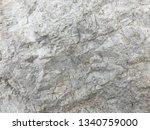 rock by the sea | Shutterstock . vector #1340759000