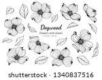 Collection Set Of Dogwood...