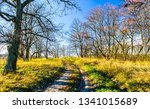 nature rural road landscape.... | Shutterstock . vector #1341015689