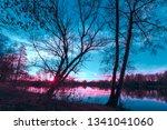 magic light during sundown on a ... | Shutterstock . vector #1341041060