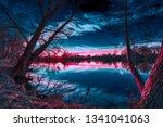 magic light during sundown on a ... | Shutterstock . vector #1341041063