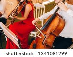 The Music Quartet Plays At The...