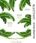 Set Of Backgrounds With Palm...