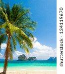 island lagoon palms overhanging | Shutterstock . vector #134119670