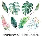 watercolor leaves set. hand... | Shutterstock . vector #1341270476