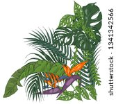 tropical plants and flowers ... | Shutterstock .eps vector #1341342566