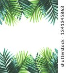 tropical leaves foliage plant... | Shutterstock . vector #1341345863