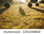 ground level shot of boules... | Shutterstock . vector #1341348800