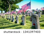 Memorial Day American Flags An...