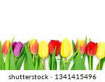 row of fresh multi colored... | Shutterstock . vector #1341415496