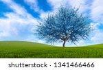 Fantasy Spring Landscape With...
