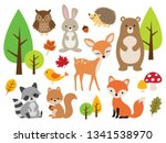 Stock vector vector illustration of cute woodland forest animals including deer rabbit hedgehog bear fox 1341538970