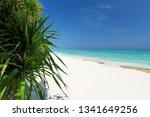 beautiful nature and white... | Shutterstock . vector #1341649256