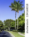 Road to residential community in Naples, Florida - stock photo