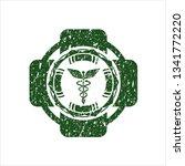 green caduceus medical icon...   Shutterstock .eps vector #1341772220