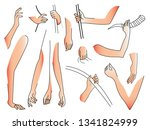 blank in the form of sketches...   Shutterstock .eps vector #1341824999