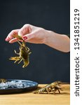 the chef holds a live crayfish. ... | Shutterstock . vector #1341851219