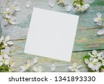 abstract spring background of... | Shutterstock . vector #1341893330