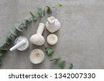 eucalyptus leaves and candle... | Shutterstock . vector #1342007330