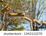 adrenaline park  climbing       ...   Shutterstock . vector #1342112270