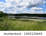 reed belted lake | Shutterstock . vector #1342123643