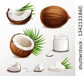 coconut realistic set with nut... | Shutterstock .eps vector #1342131860