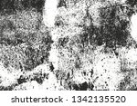 distressed overlay texture of... | Shutterstock .eps vector #1342135520