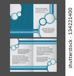 brochure design | Shutterstock .eps vector #134221400