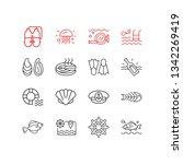 illustration of 16 nautical... | Shutterstock . vector #1342269419