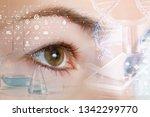 a closeup of a female eye... | Shutterstock . vector #1342299770