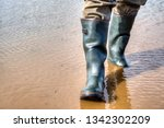 rubber boots made of natural... | Shutterstock . vector #1342302209