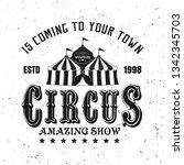 circus amazing show vector... | Shutterstock .eps vector #1342345703
