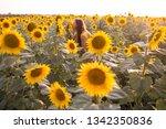 beautiful woman with long hair... | Shutterstock . vector #1342350836