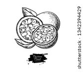 passion fruit vector drawing.... | Shutterstock .eps vector #1342394429
